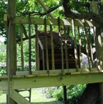 Tree House - Another view
